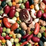 legumi proteine